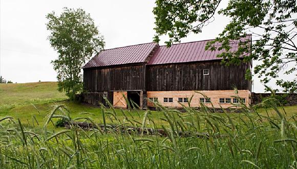Langwood Farm, Cornish, photo by Kathie Fife Photography