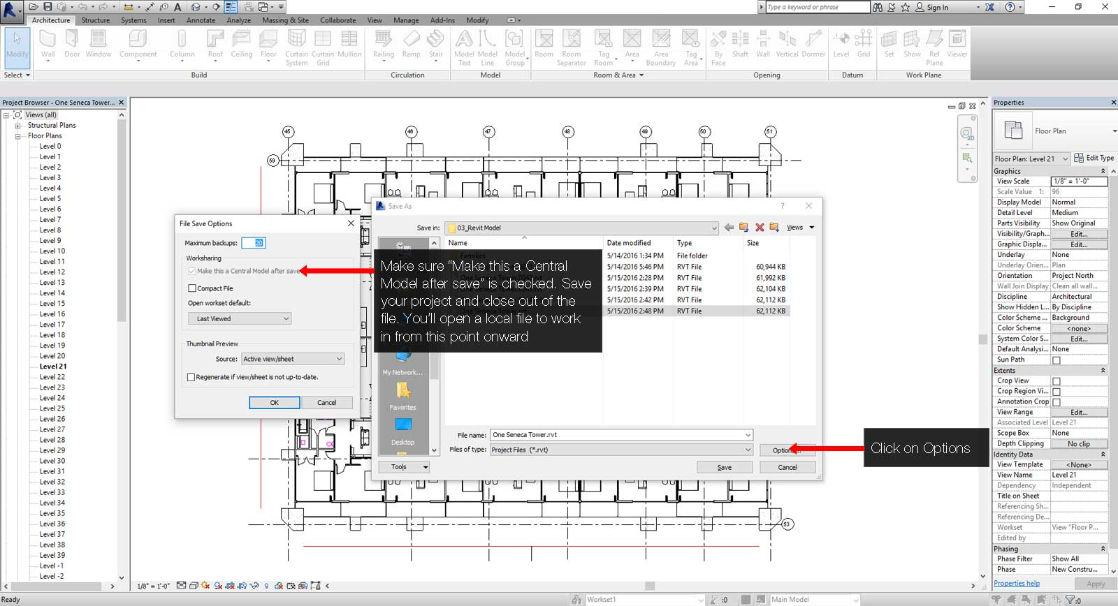 How to create a central Revit file step 04