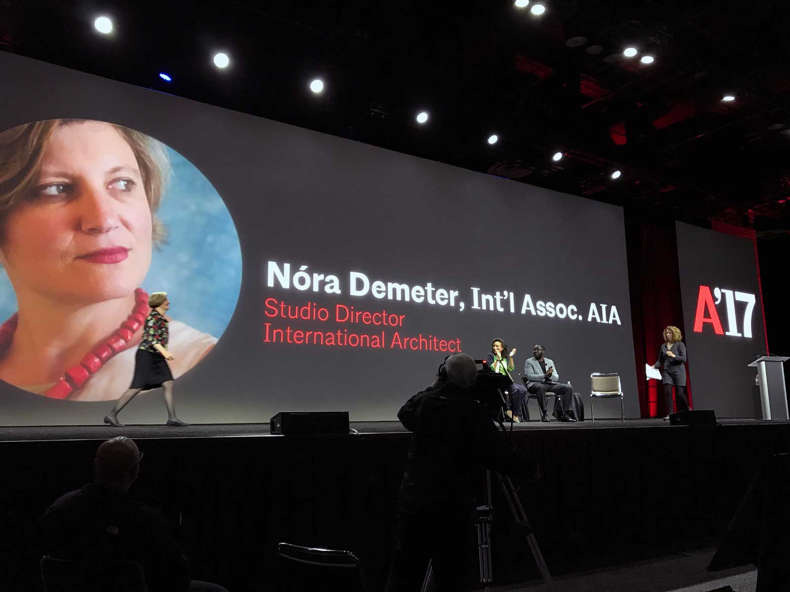 Nora Demeter participating in discussions at AIA 2017 Conference