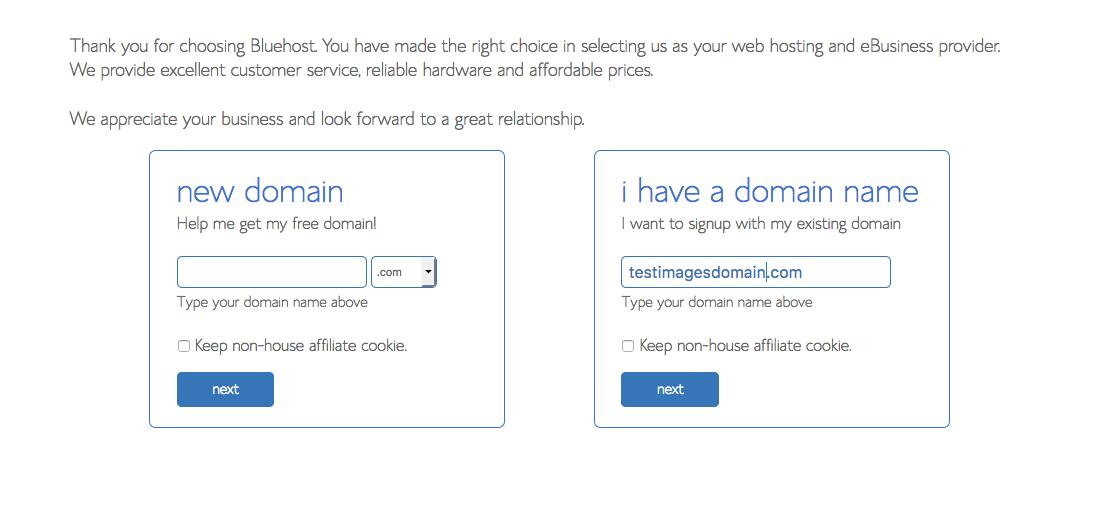 3 Domain Name