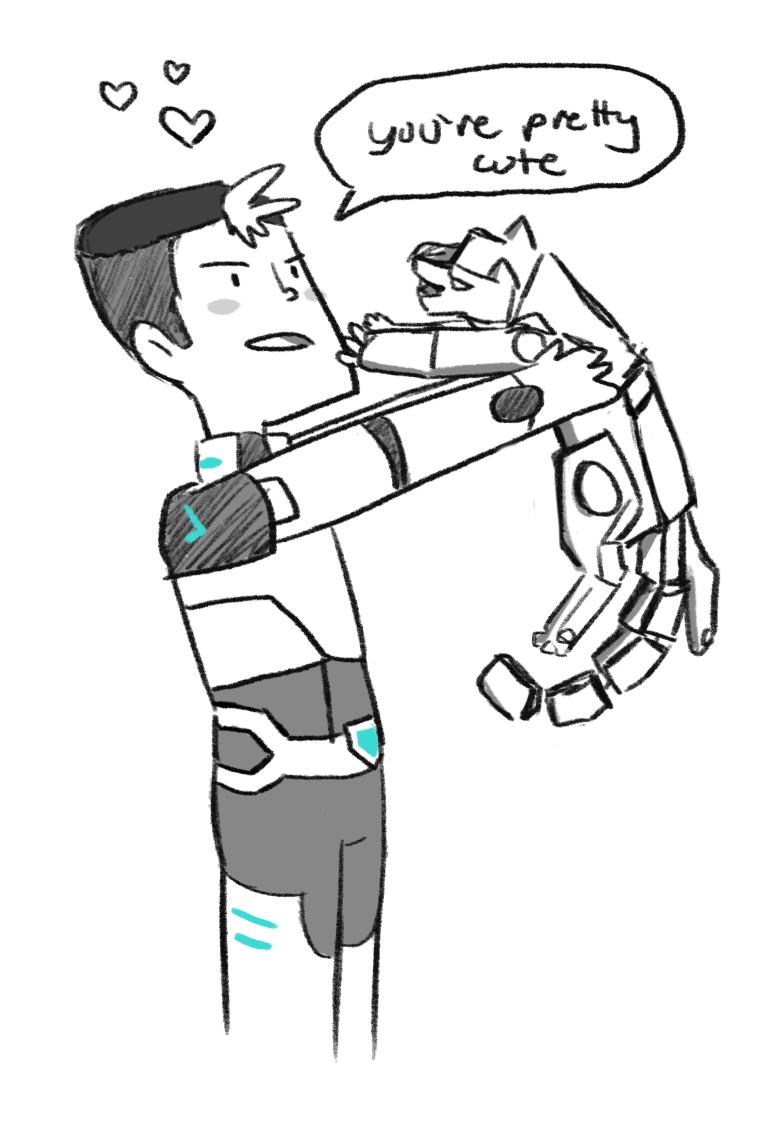 Shiro likes cats