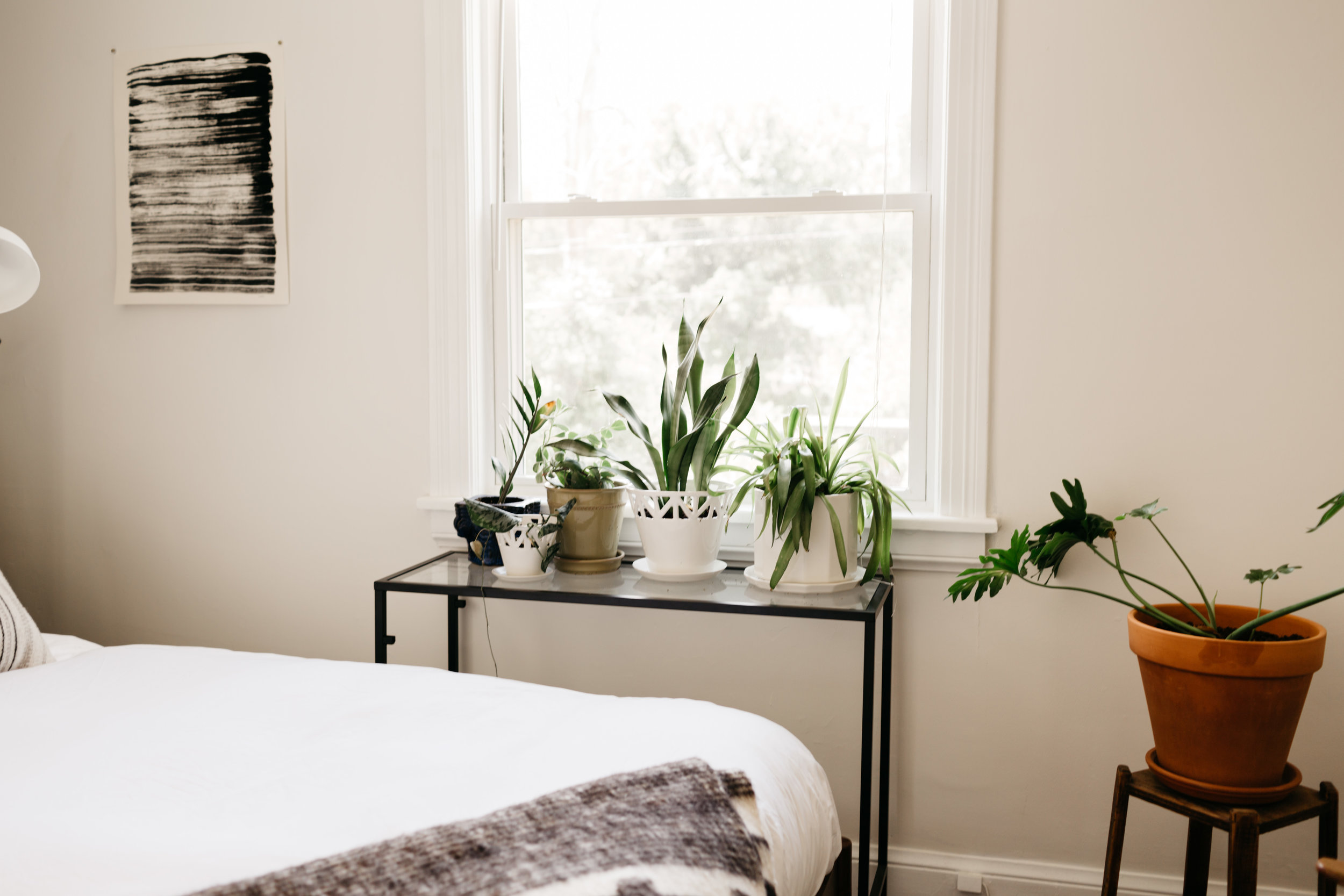 """A glimpse into Katie's plant collection featuring (from left to right)  Small Tabletop Planter ,  Medium Tabletop Planter ,  8"""" Riveted Planter"""