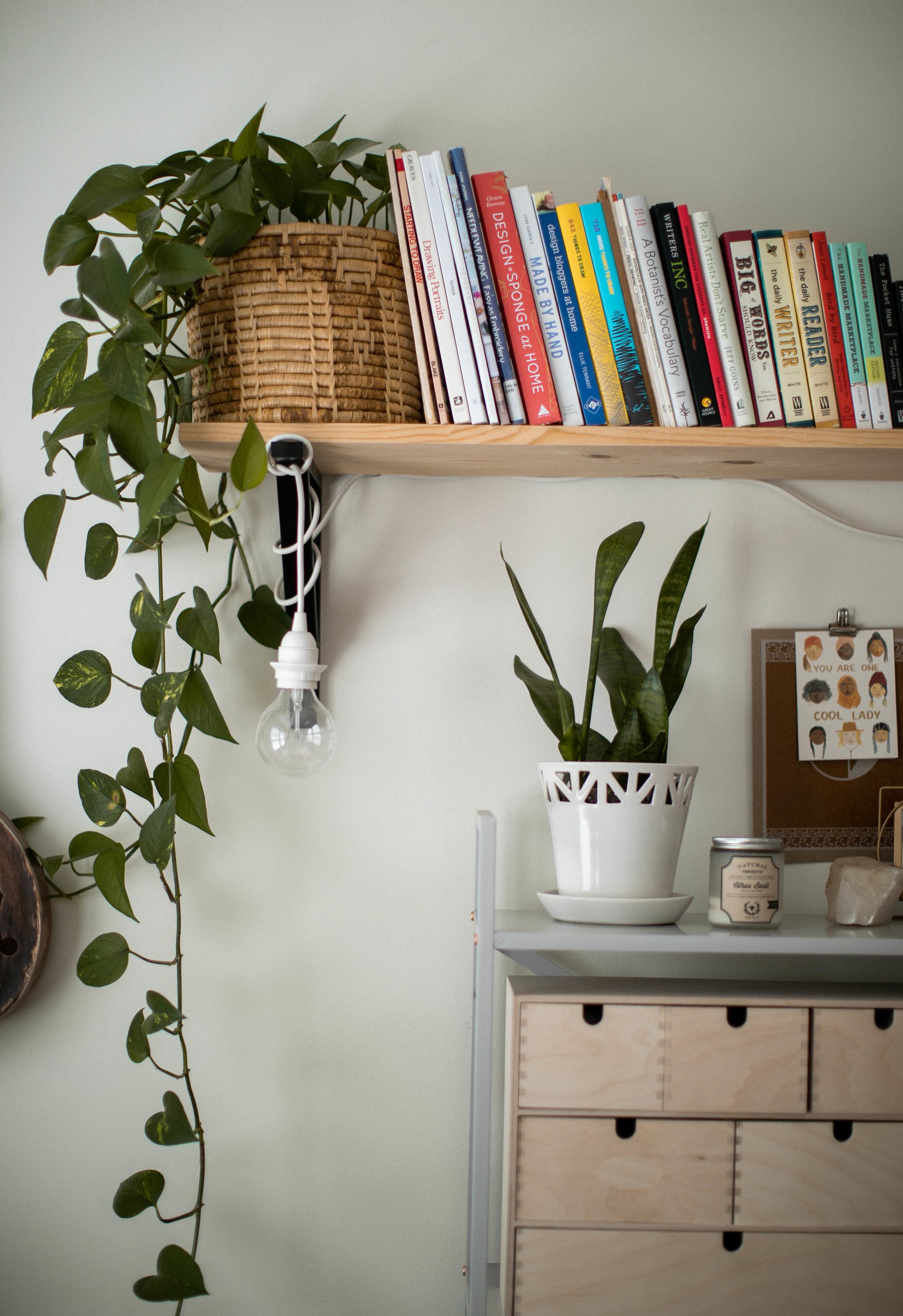 CONVIVIAL -  Medium Tabletop Planter
