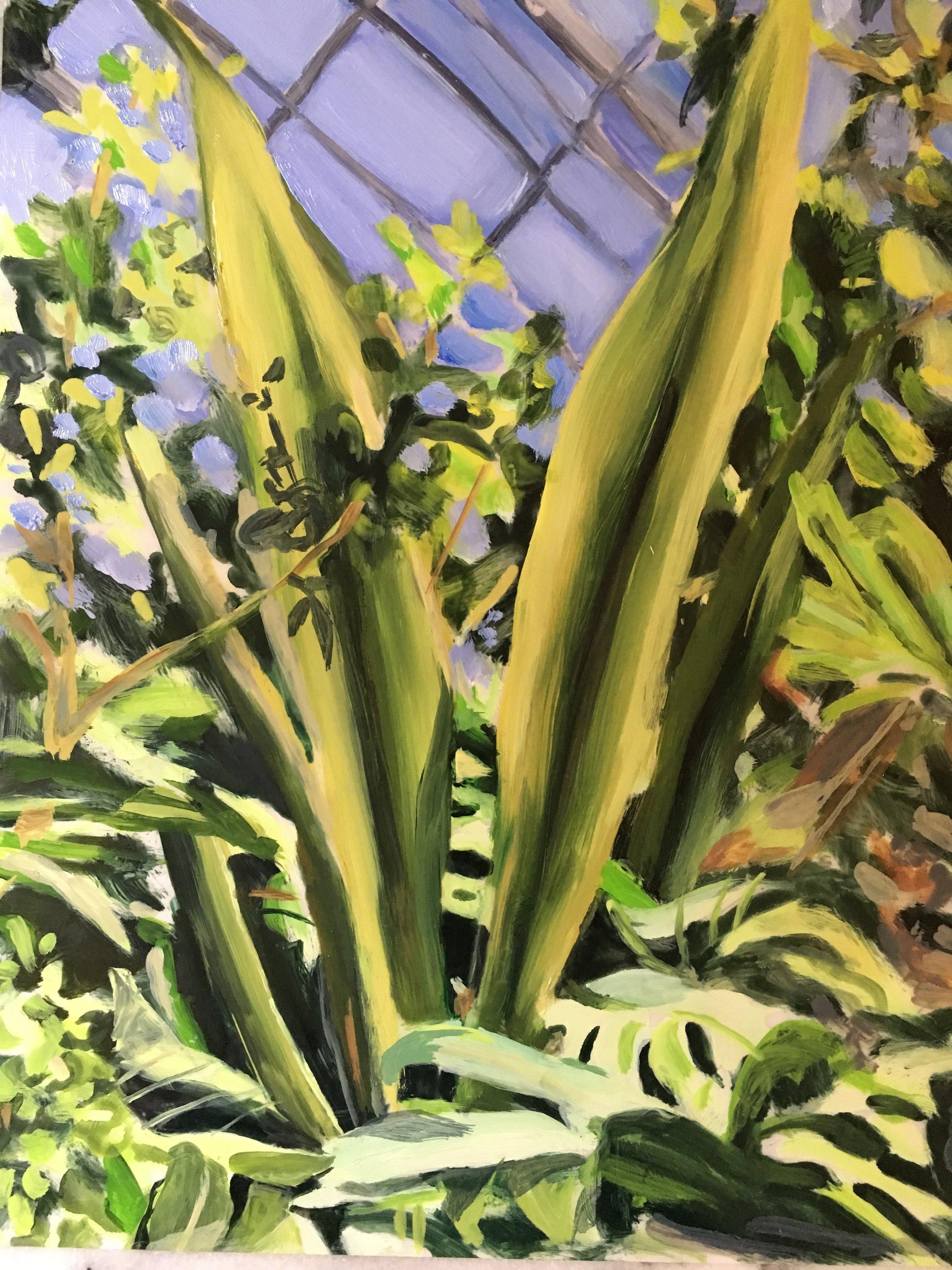 "Plants in Captivity No. 3 | Oil on Duralar | 11 x 14"" L"