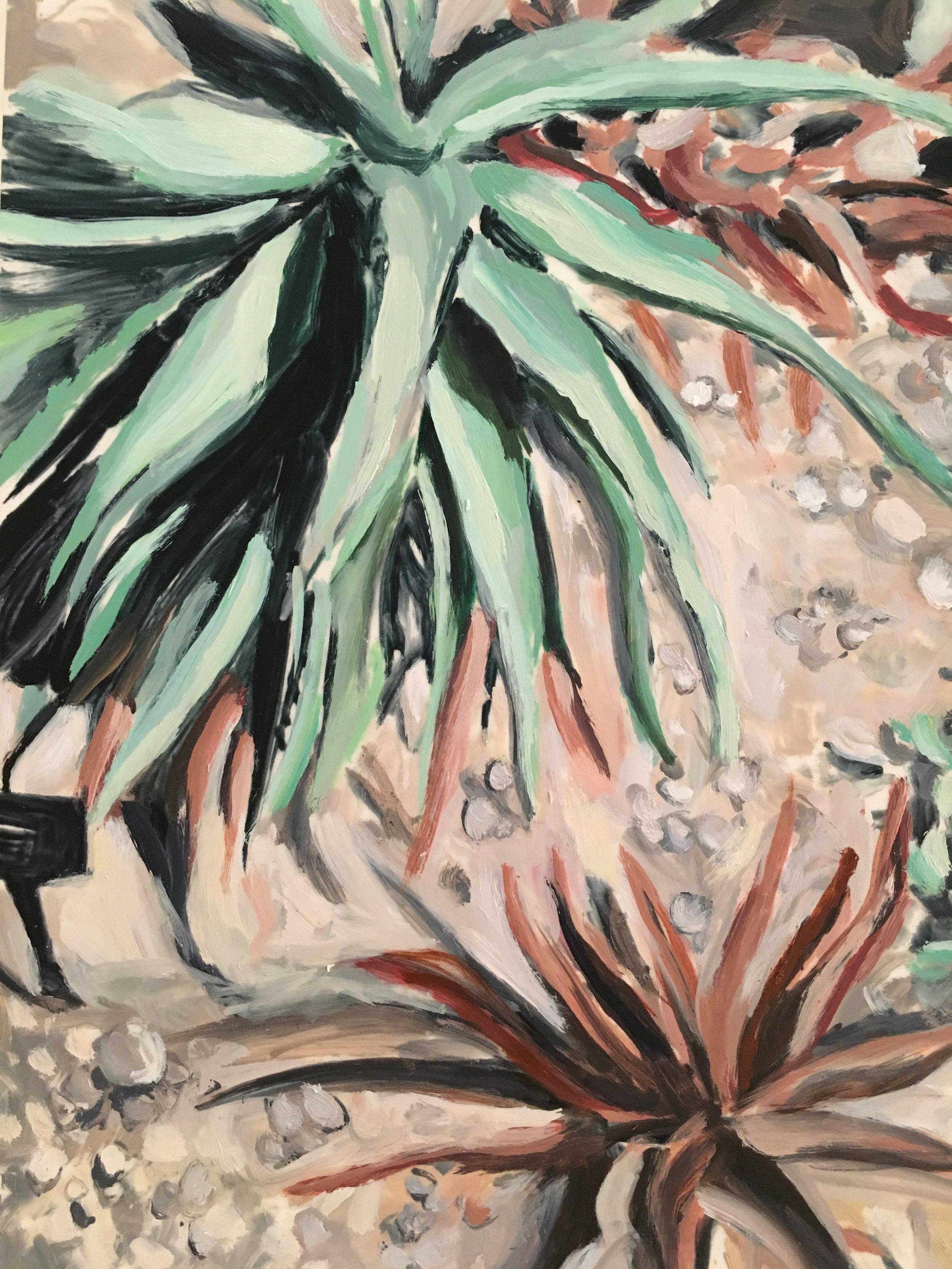 "Plants in Captivity No. 6 | Oil on Duralar | 11 x 14"" L"