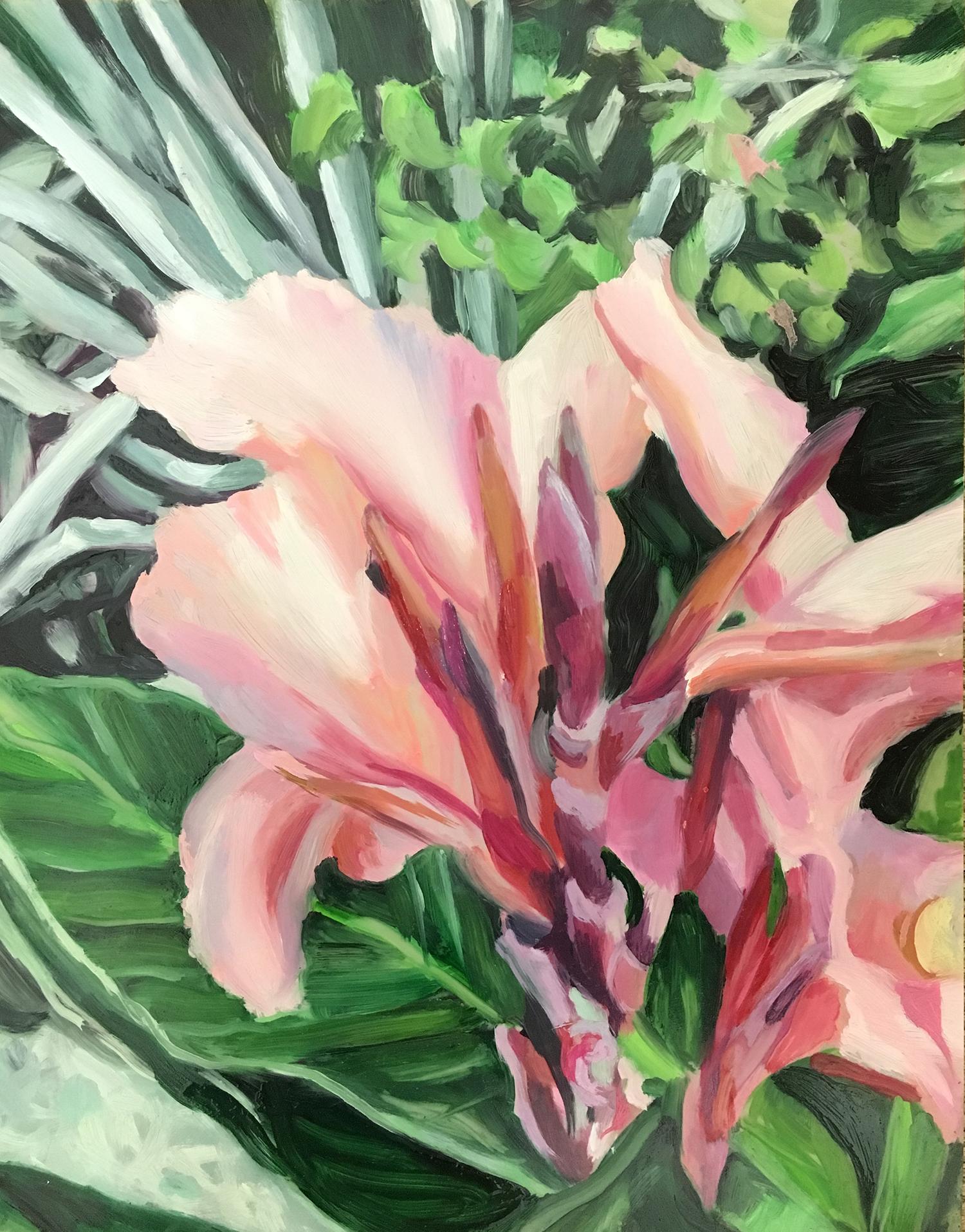 "Plants in Captivity No. 8 | Oil on Duralar | 11 x 14"" L"