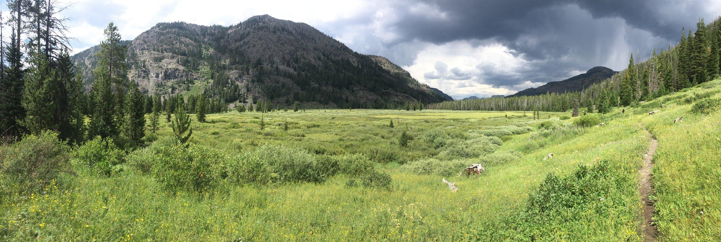Eagle Creek Meadows