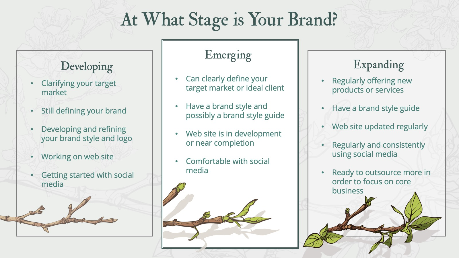 To get the most out of working together, yours is an emerging or expanding brand.