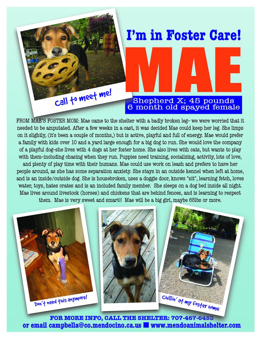 Mae foster.jpg