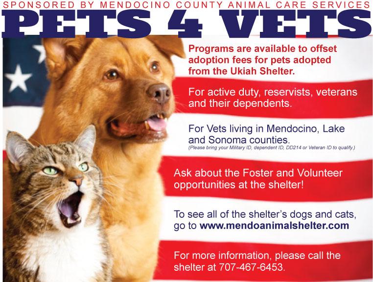 Pets-for-Vets-2019.jpg
