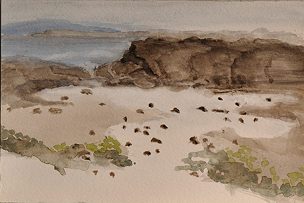 Fossil Beach Watercolor