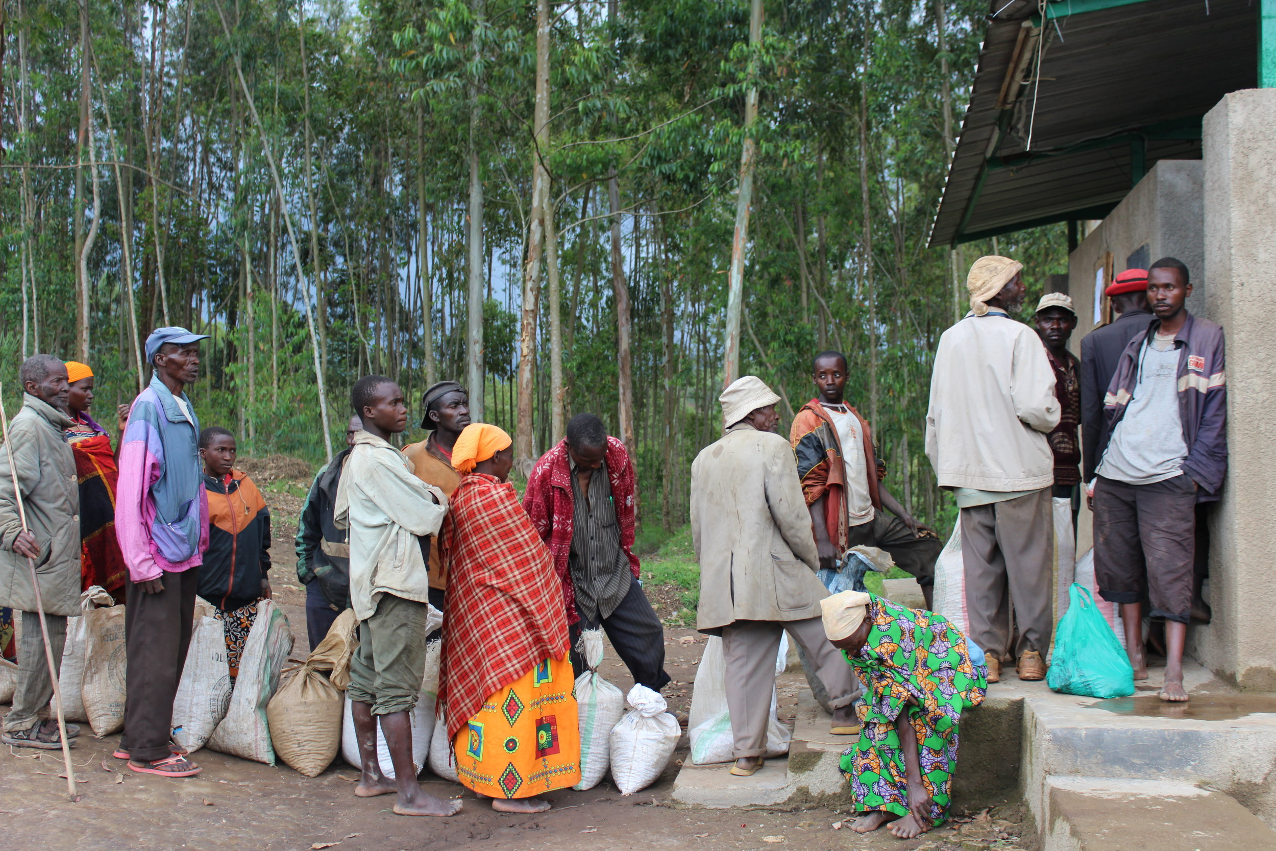 Farmers waiting in the queue outside the buying hall