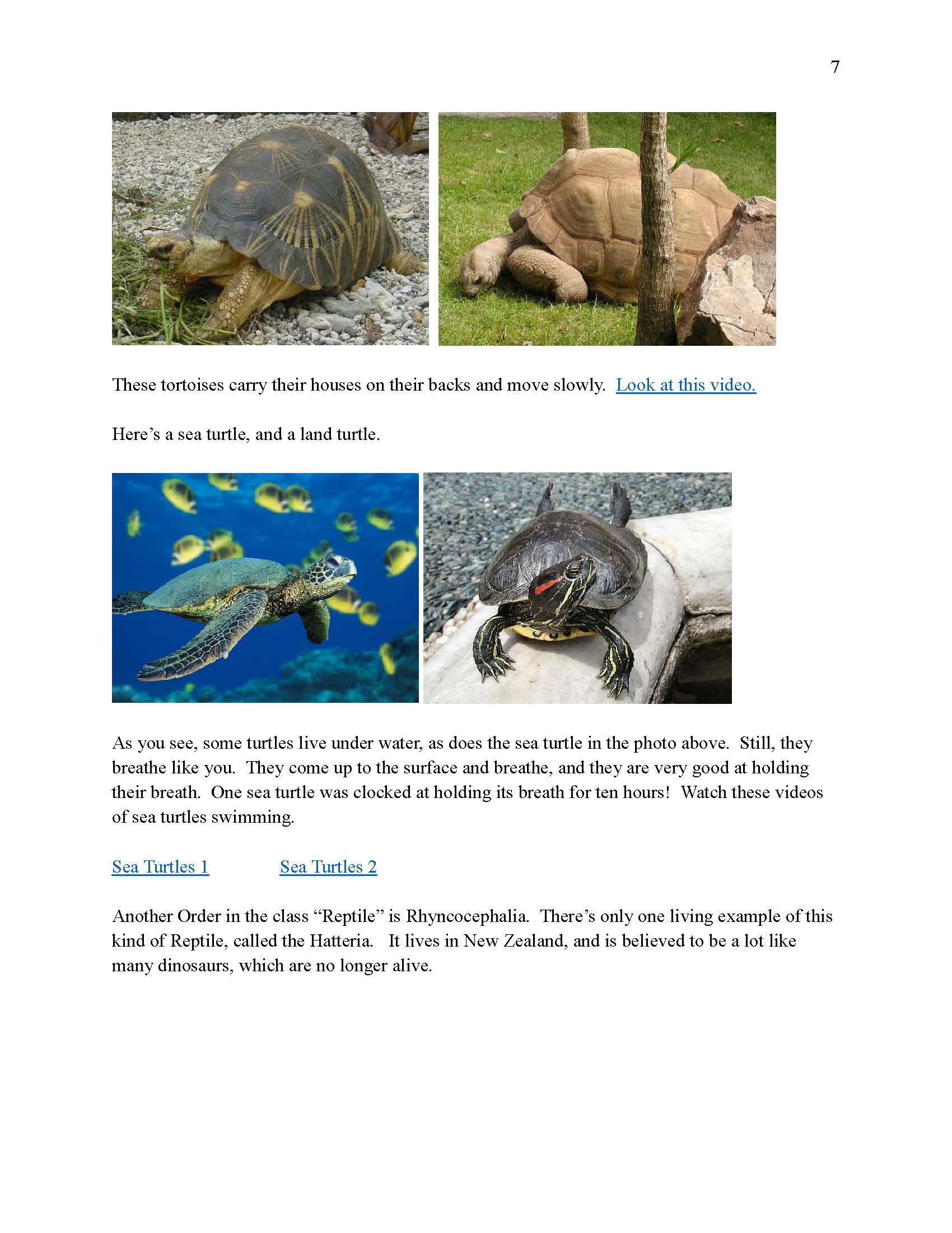 Step 2 Science 6 - Biology 2_Page_08.jpg