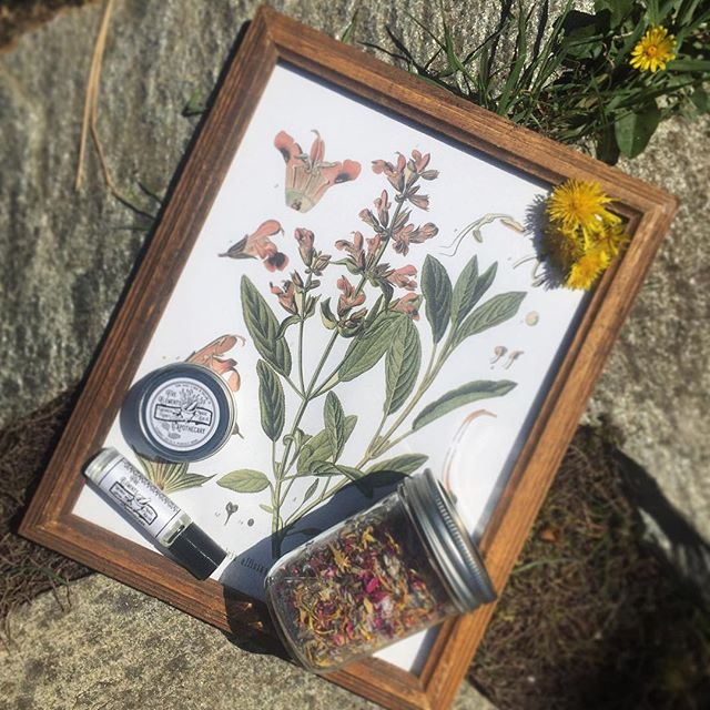 The winner is..... @theokiehome congrats!!! 🌱✨🌸🌈 #giveaway #fiveelementsapothecary  #contest #giveawaycontest  #contests #contestalert #contestentry #sweepstakes #herbalism #skincaregiveaway #giveaways #winitwednesday #competition #win #organicskincareproducts #clothinggiveaway #giveawaytime #witchythings #witchesofinstagram #wiccan #witchcraft #witchaesthetic #wicca #freegiveaway #mothernature #magic #skincareproducts #herbalist #naturalskincare #naturalskincareproducts