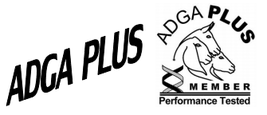 We are an ADGA Plus herd!