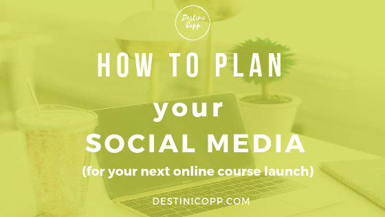 How to plan your social media (for your next online course launch)