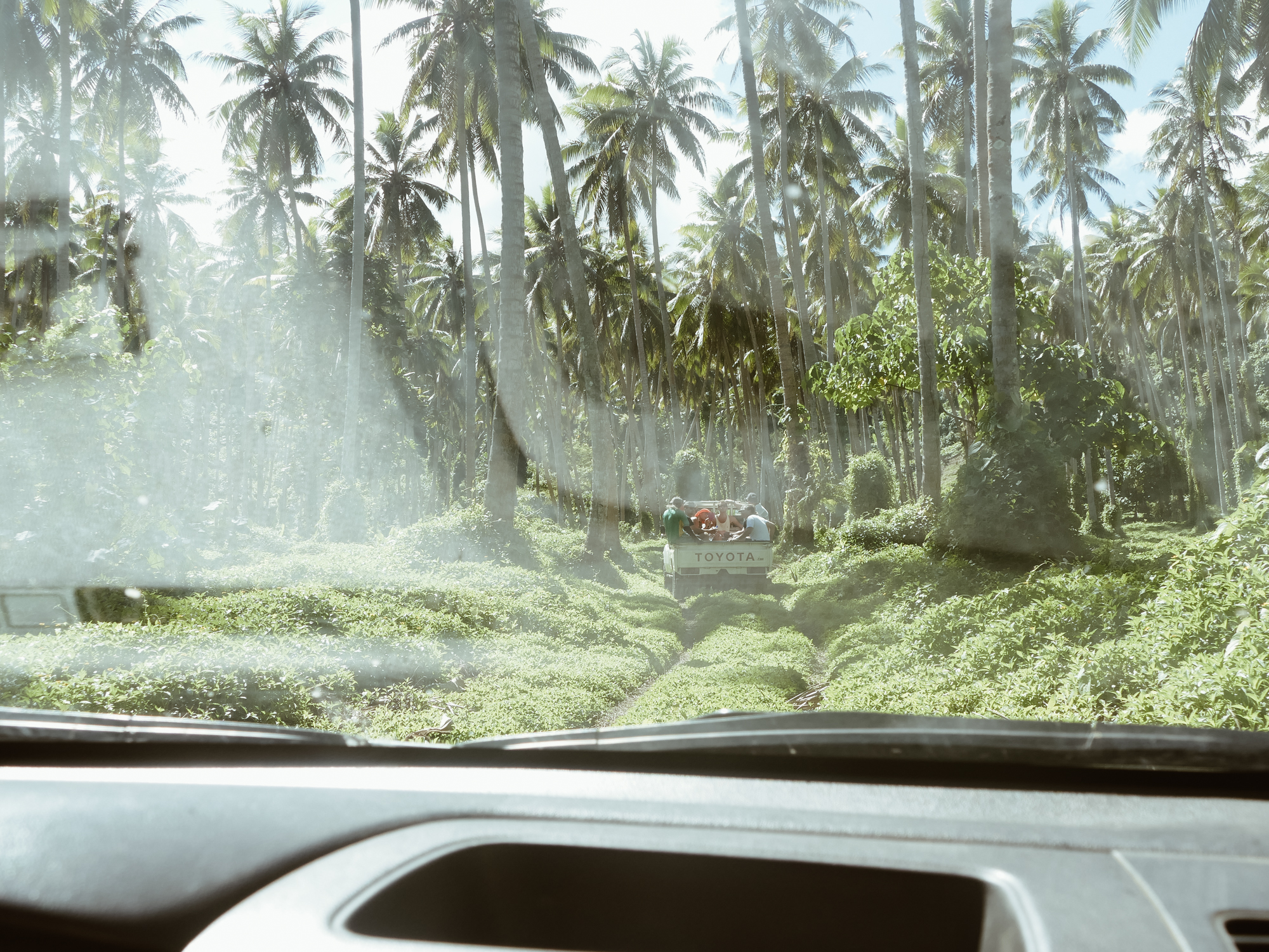 Driving through the jungle in Pentecost Island, Vanuata, South Pacific.