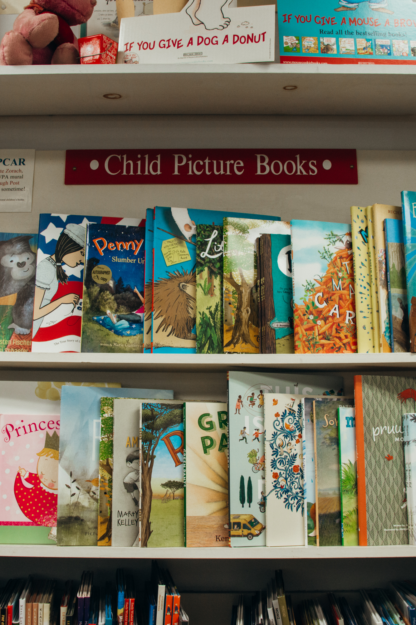 Selection of children's books in the Toadstool Bookstore, Peterborough, New Hampshire.