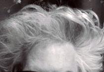 jarmusch-hair1.jpg