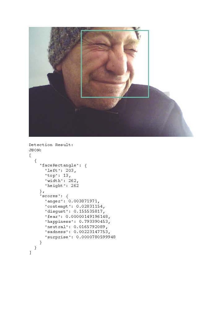 Detection result-01 emotion copy.jpg