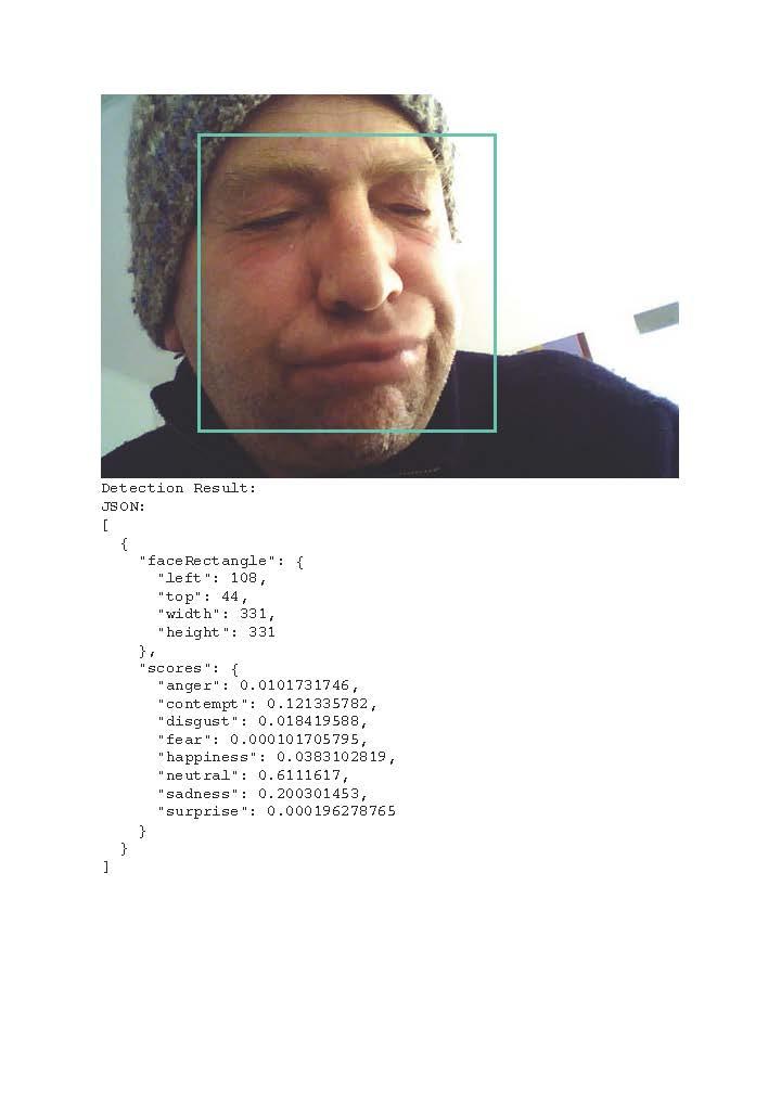 Detection result-01 emotion copy 2.jpg