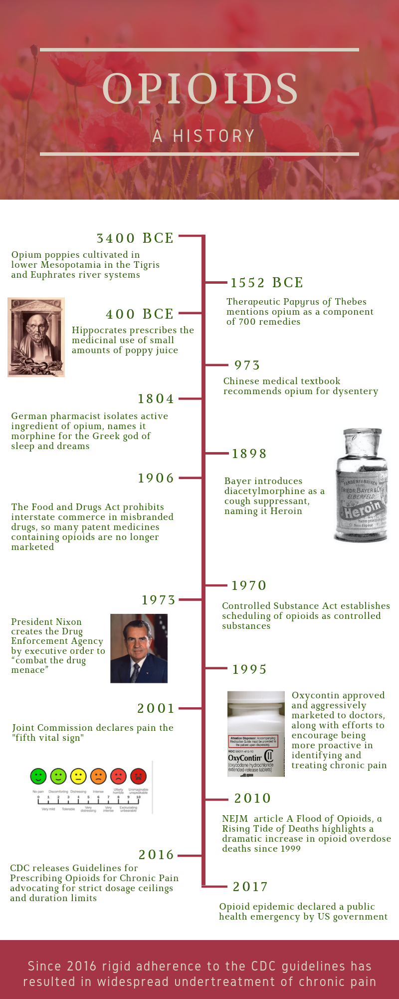 Timeline copyright Dr. Ginevra Liptan 2019