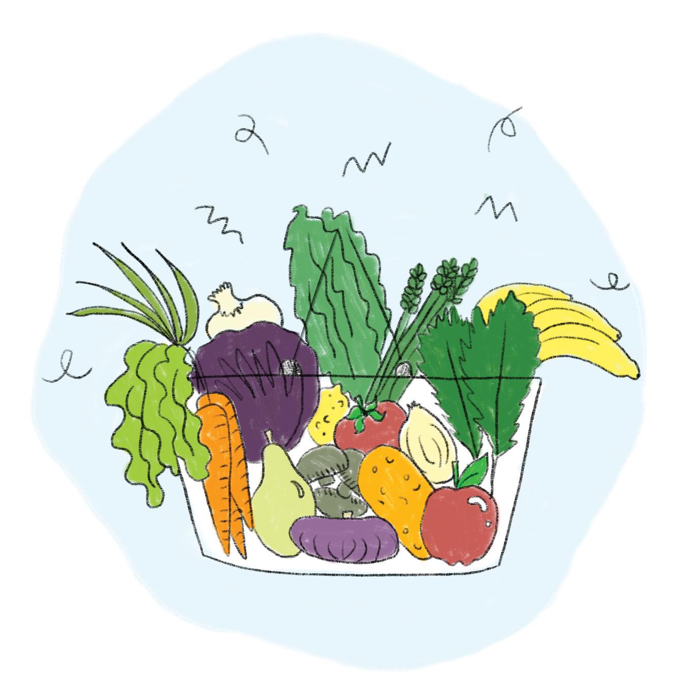 groceries2.jpg