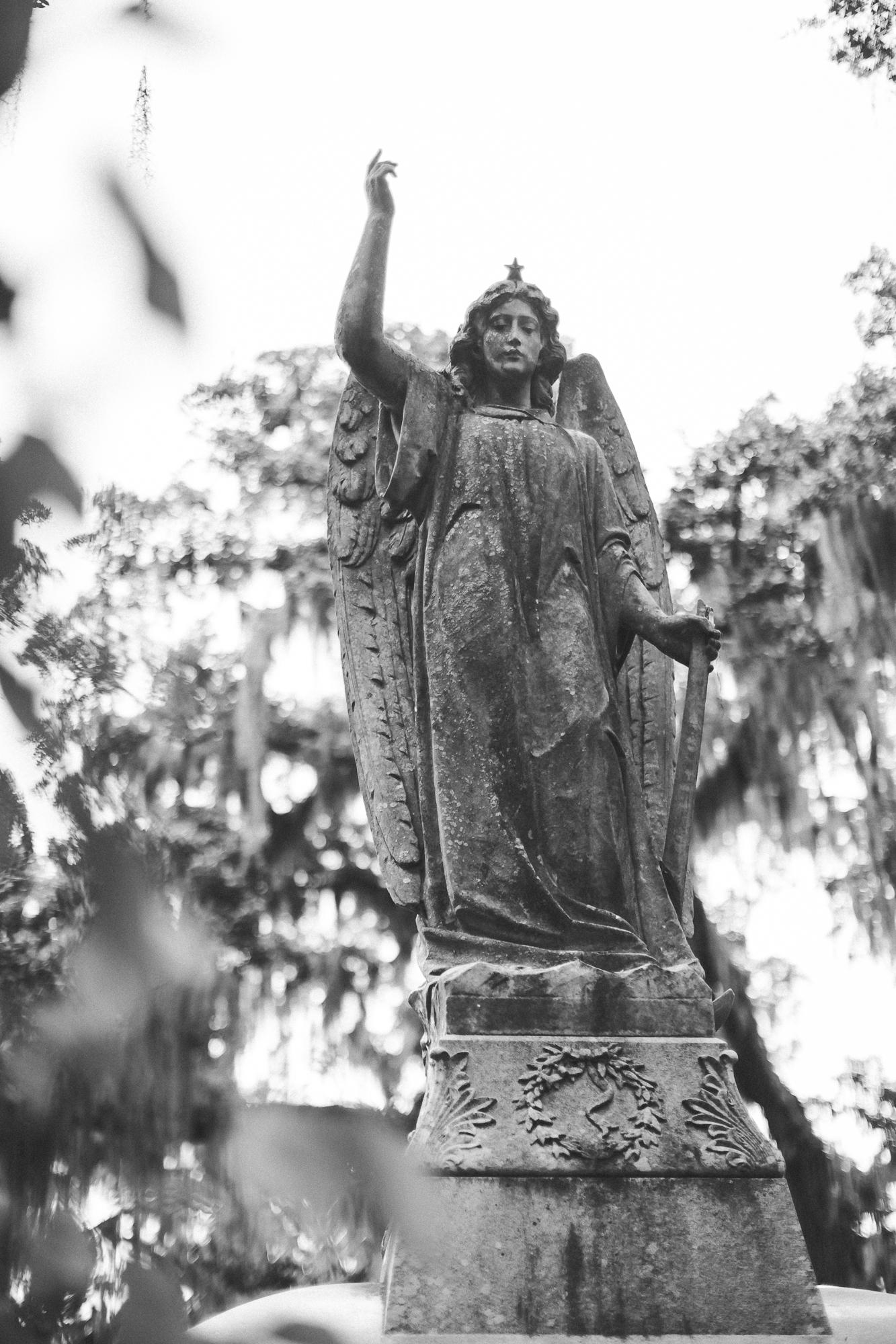 Savannah Georgia - Wormsloe - DiBlasio Photo-2234.jpg