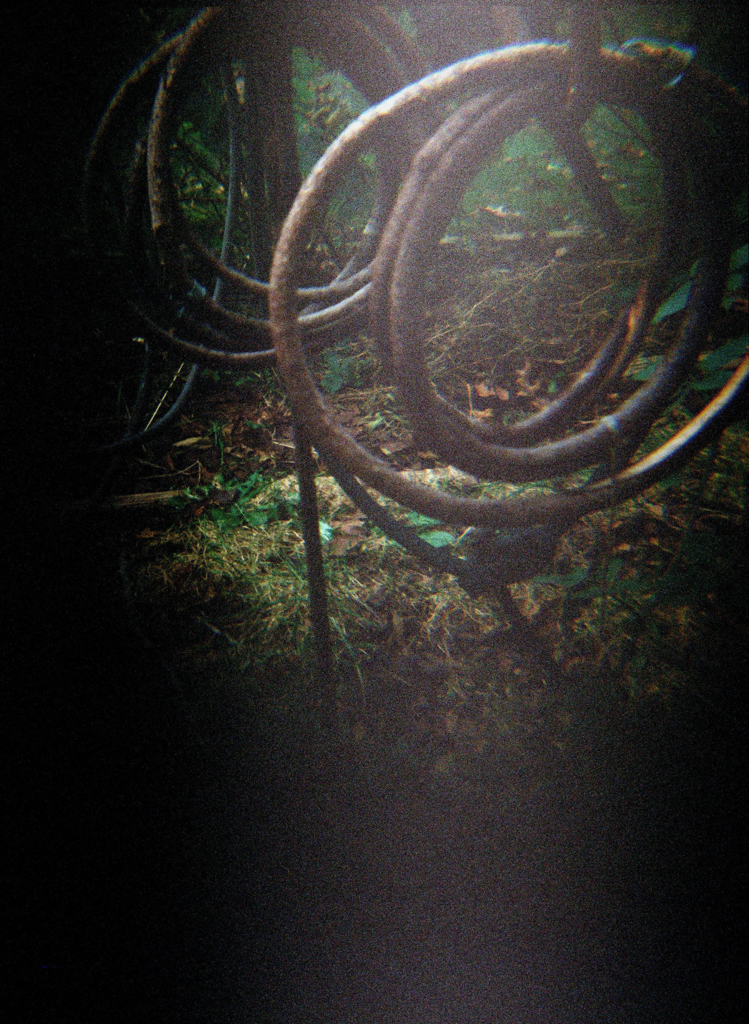ringsvertical.jpg