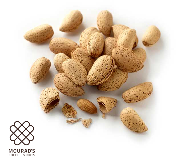 Almond In Shell Dry Roasted
