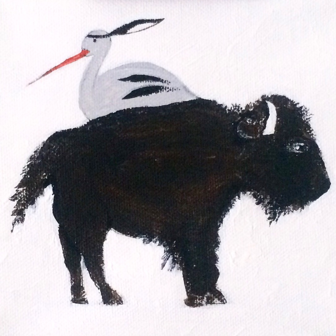 buffalostork