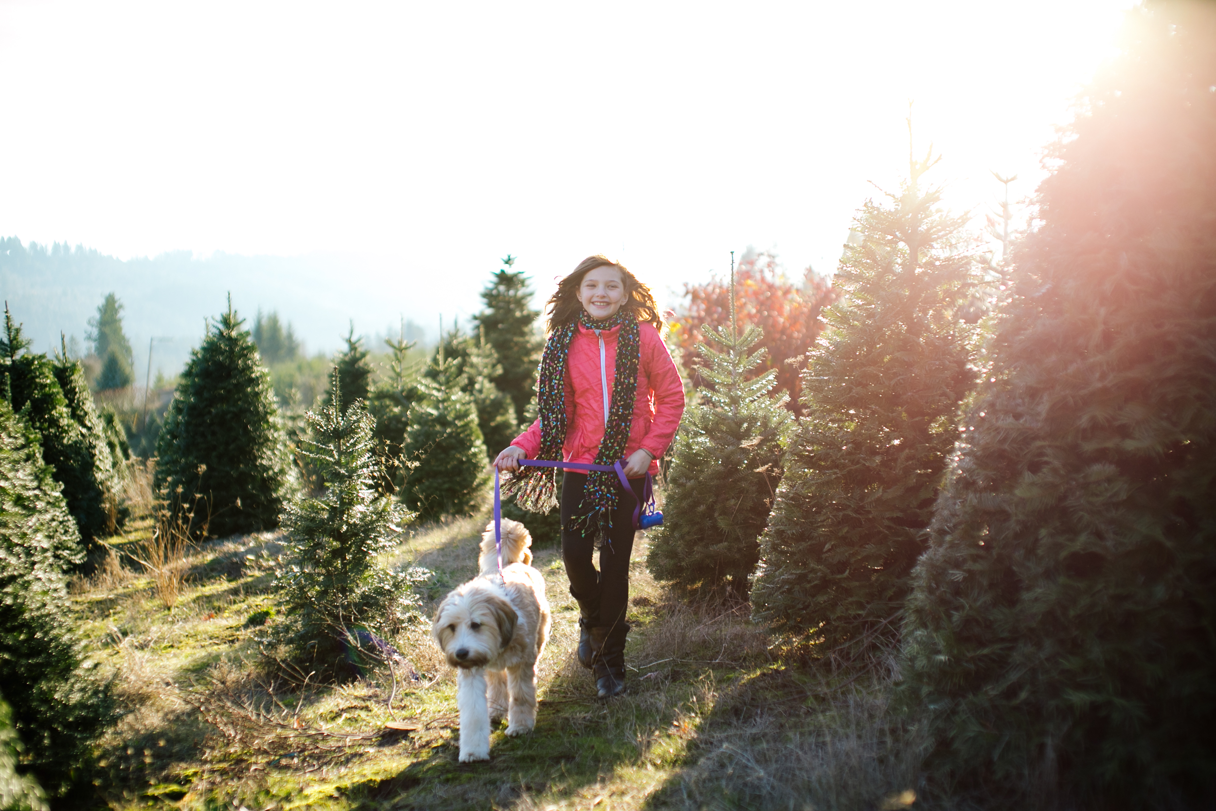 sleighbells-of-sherwood-family-photos-12.jpg