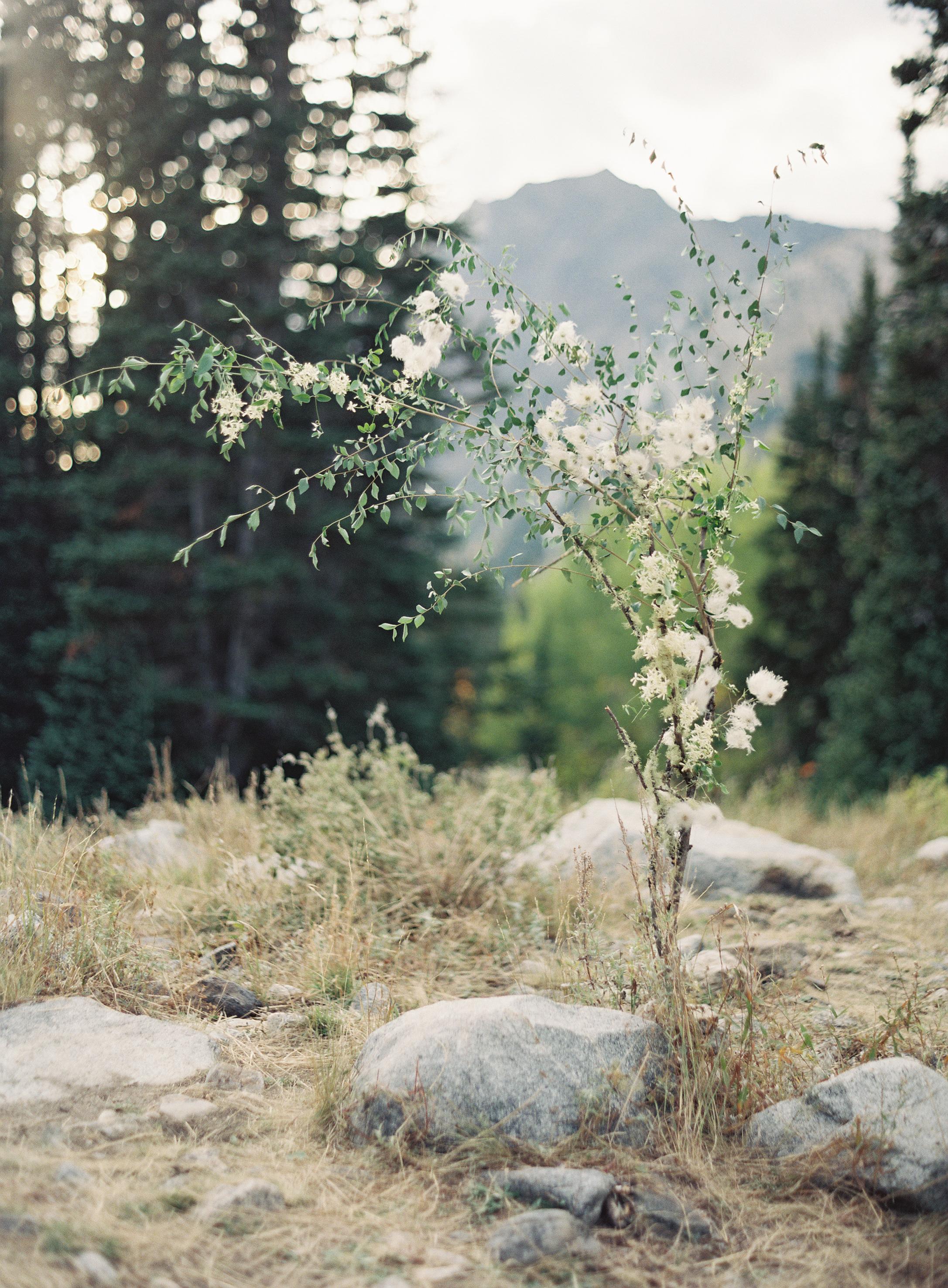 JoeyKennedy Utah d0013.jpg