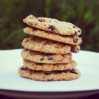 Farm-to-Oven Oatmeal Cookies