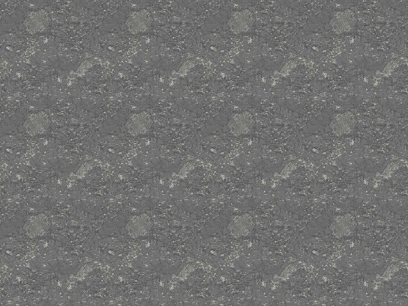 Axminster- BX04841r2