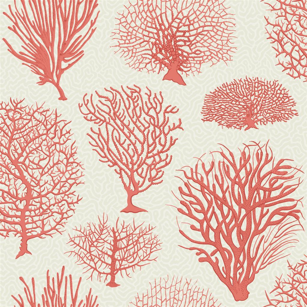 Cole & Sons Coral SeaFern Wallpaper design