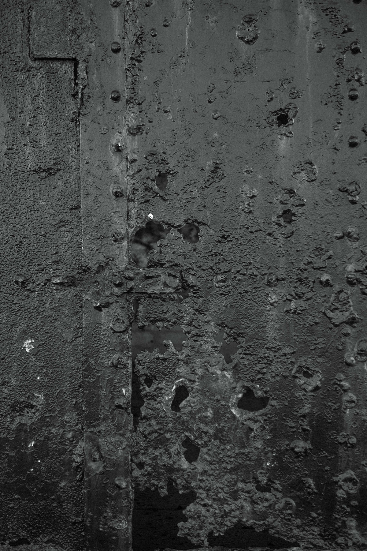 cuckoo-4.jpg