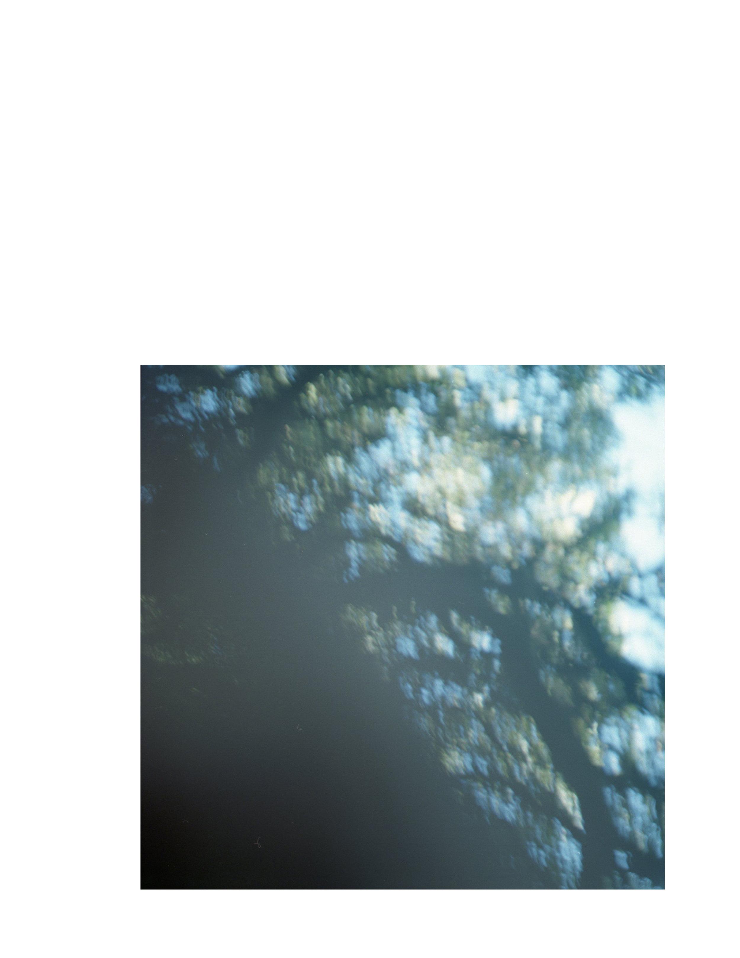 p11.jpg