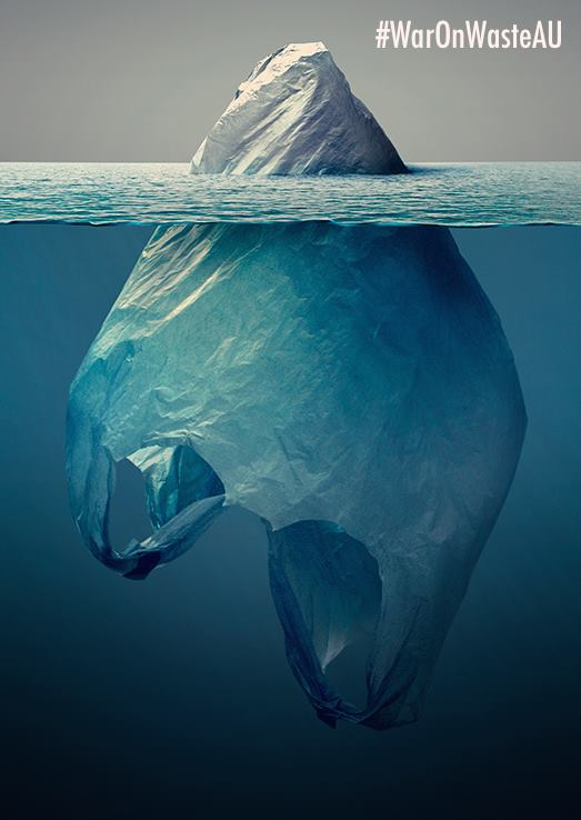war on waste ban the bag