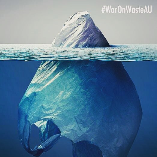 "Why you NEED to watch ""War on Waste"" Check it out at KINDLINGS.CO (link in bio) 📷@waronwasteau !"