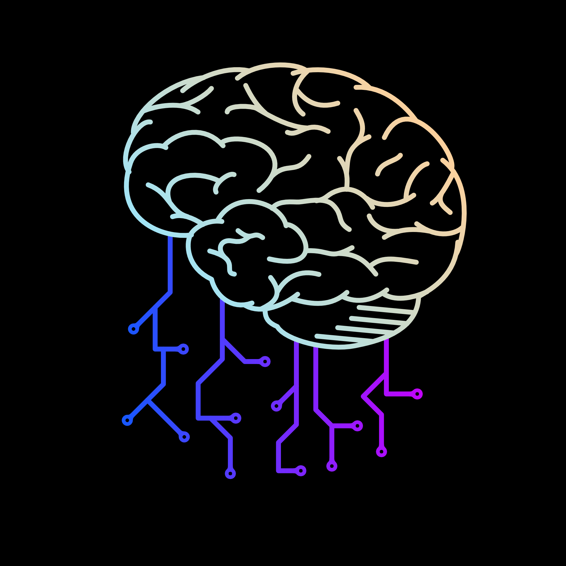 BrainNodesBlackB.jpg