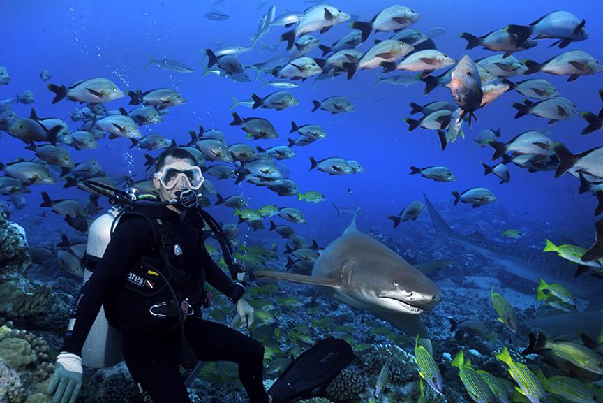 Phil and shark.jpg