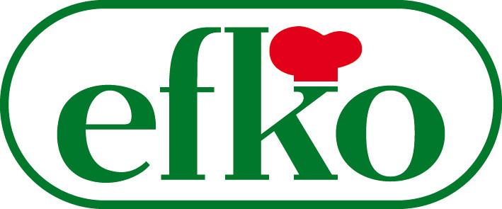Logo_efko_2012_Pant356_4c_gr2.jpg