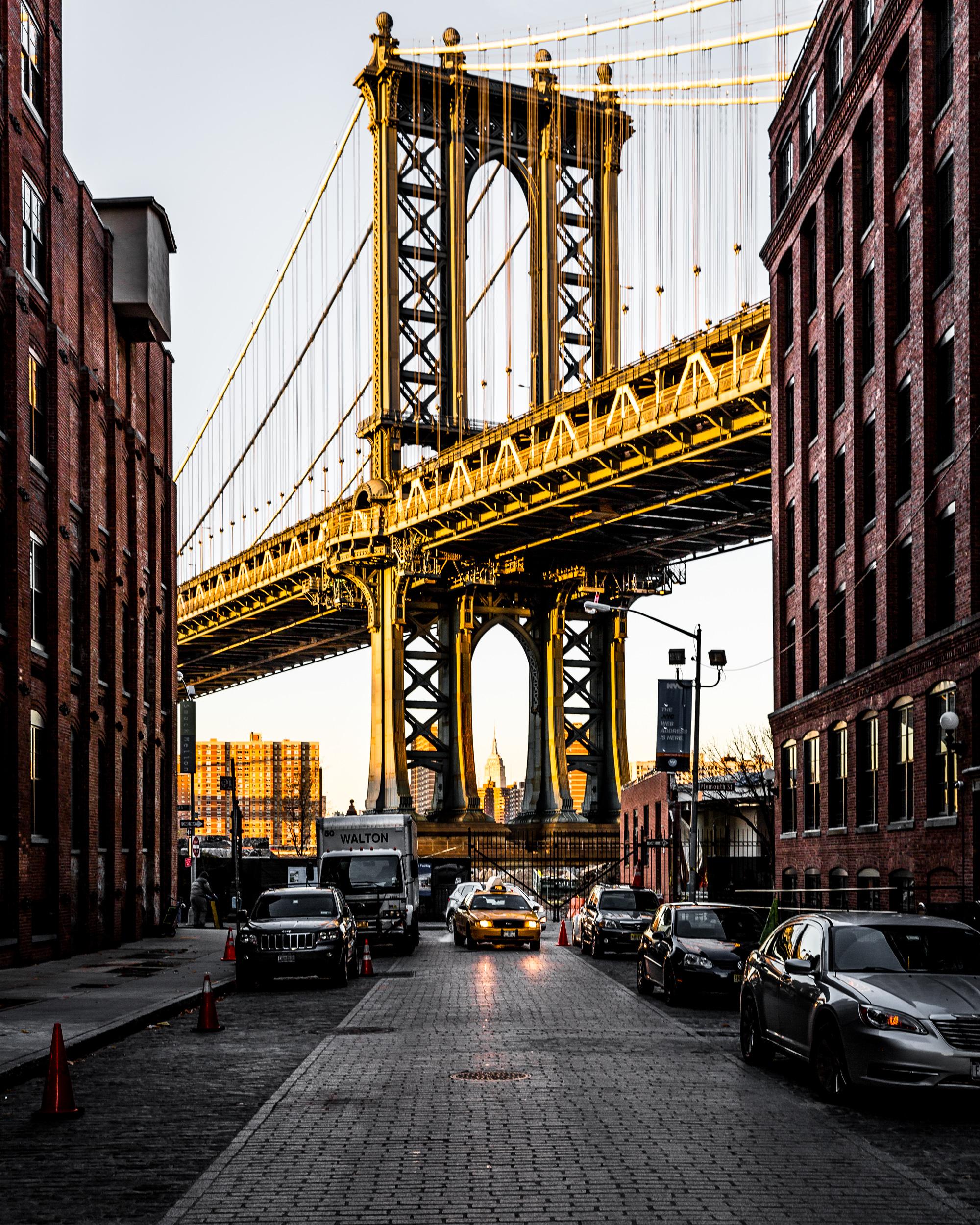NY Icons.jpg
