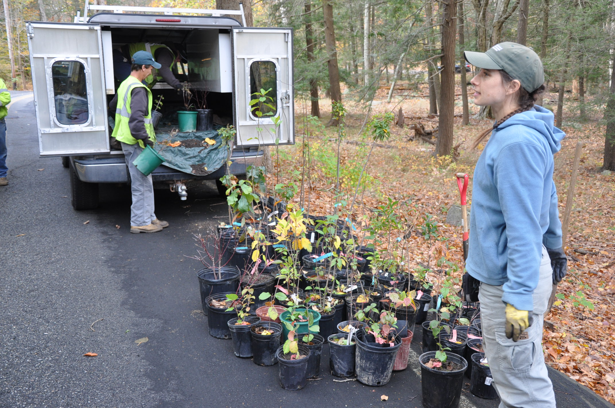 Beth Roessler of the DEC delivered the plants.