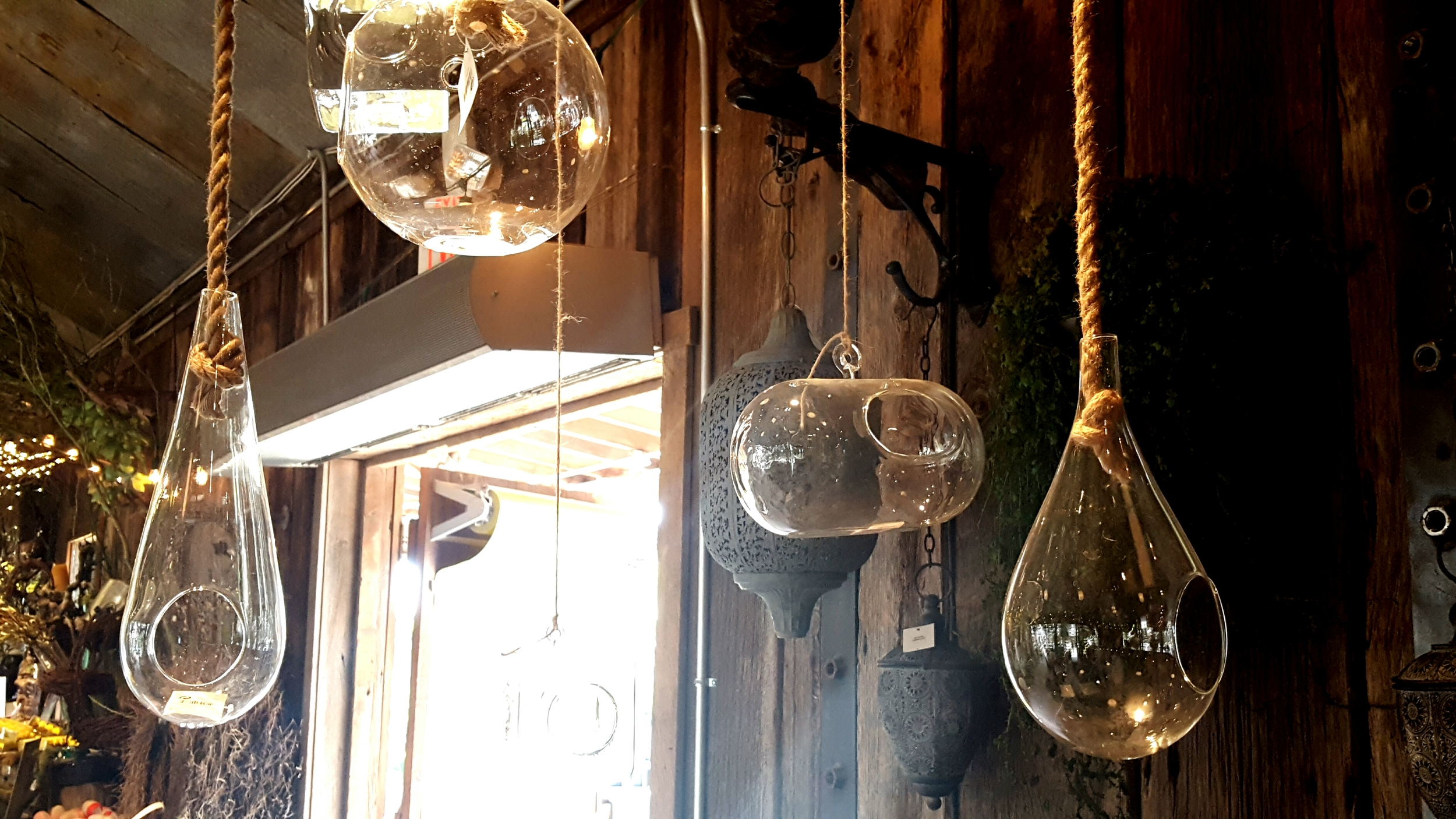 Building terrariums is just one of Charlene's gardening hobbies. This would look great suspended from the ceiling with rope, ribbon, or chains for a more industrial feel.