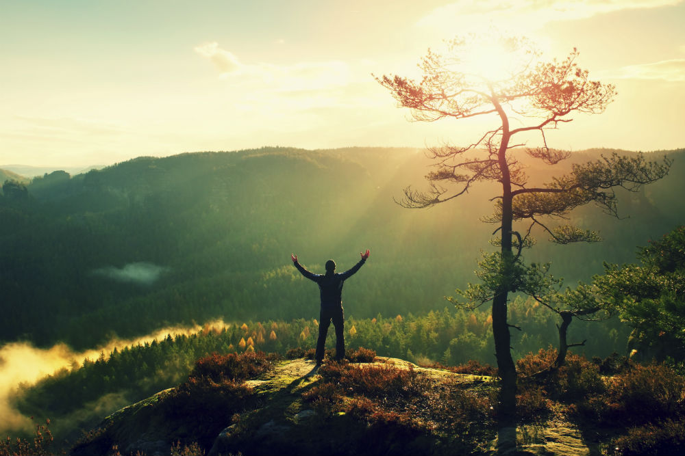 stock-photo-81724437-sunny-morning-happy-hiker-with-hands-in-air-bellow-tree.jpg