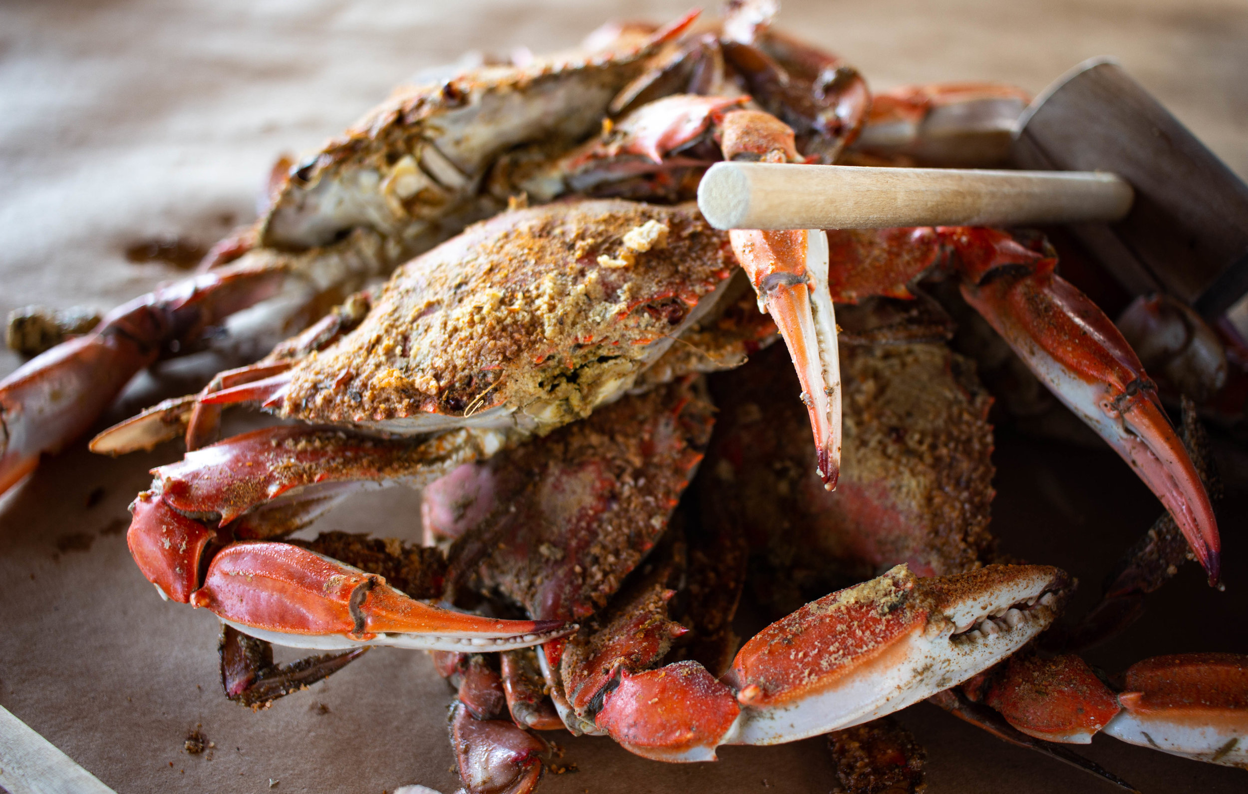 Crab Feast - 2019 07 31 (1 of 3).jpg