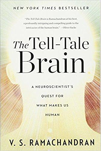the telltale brain.jpg