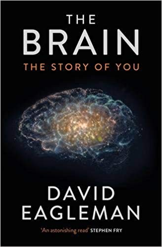 the brain the story of you.jpg